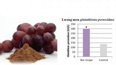 Phụ gia thức ăn thủy sản từ chiết xuất nho khô